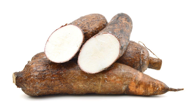 cassava - Dr Sebi