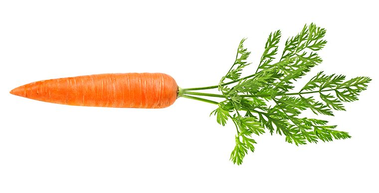 DR SEBI ON CARROTS