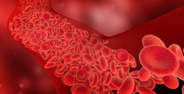 Dr Sebi on Blood Clot