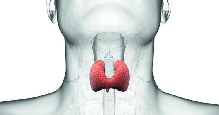 Dr Sebi on Thyroid (Hyperthyroidism)