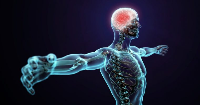 What Dr. Sebi Said About Our Central Nervous System