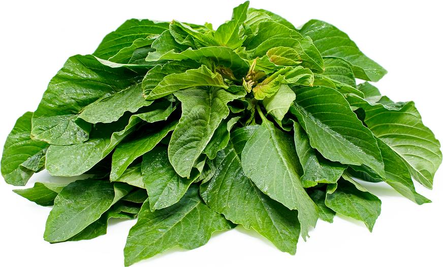 Greens (Amaranth)